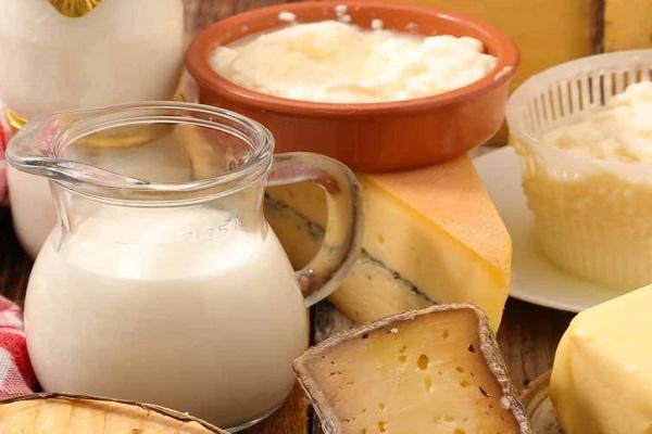 Unpasteurized Milk/ Cheeses