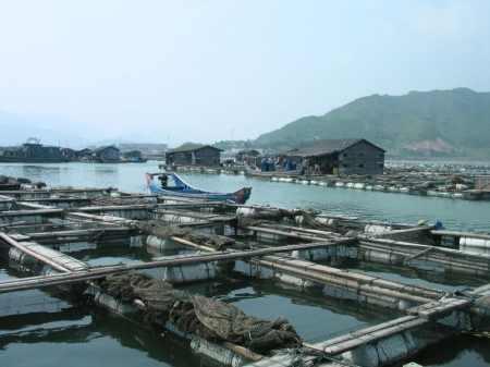 Aquaculture in Lo-nguong - droit d'auteur : Wikimedia – License CC0