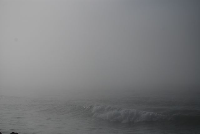 Petra Mak: Mrtvo more