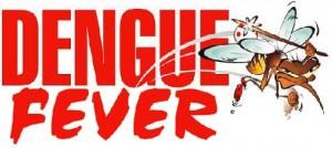 10 Sintomas de la Fiebre del Dengue