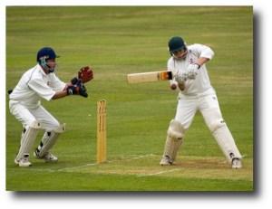 2. Cricket
