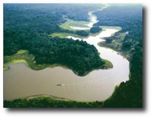 3. Amazonas