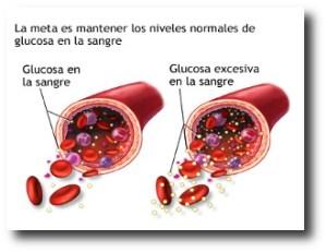 8. Controla la glucosa en la sangre