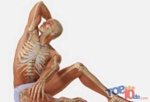 6. salud osea y muscular