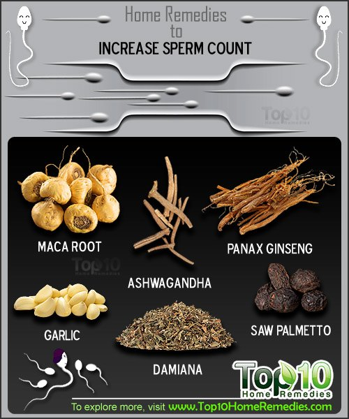 Increase sperm count natural you