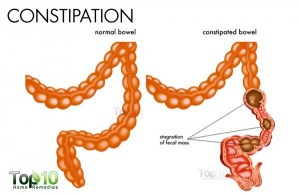 Home Remedies for Constipation   Top 10 Home Remedies