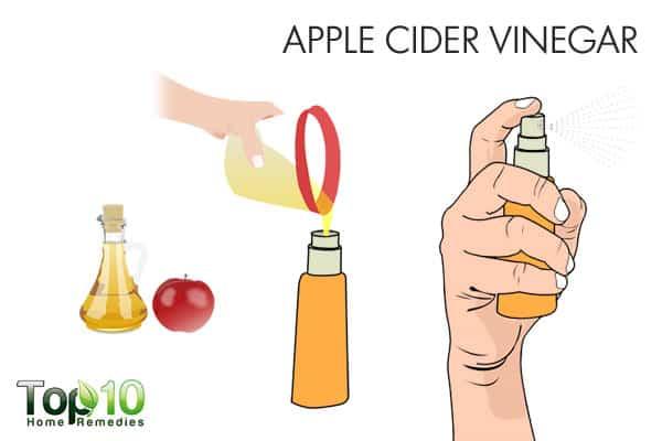 apple cider vinegar for ringworm of the scalp