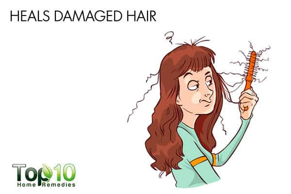 eggs help repair damaged hair