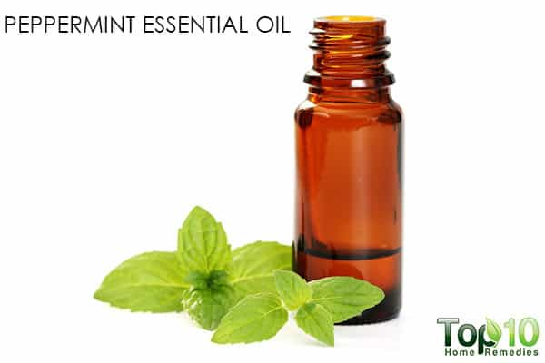 peppermint oil for haor growth