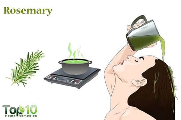 rosemary for hair loss