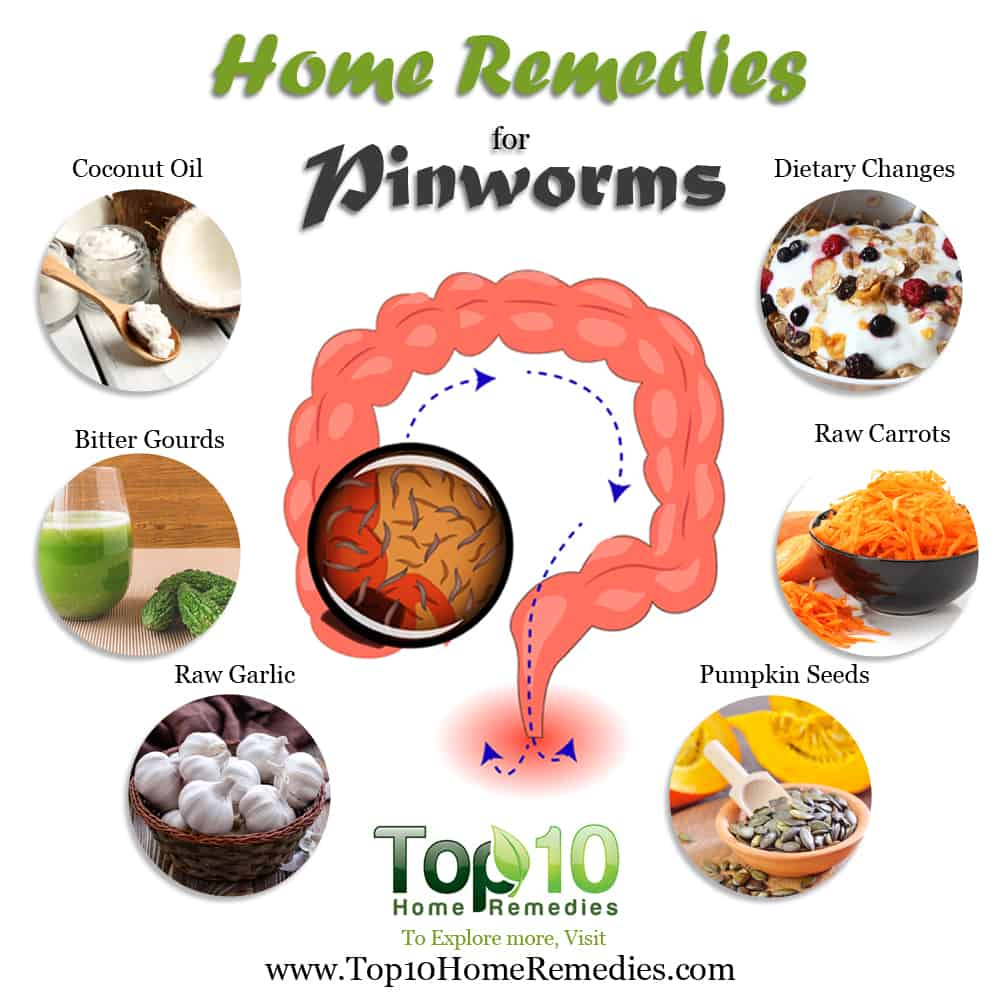 Home Remedies for Pinworms   Top 10 Home Remedies