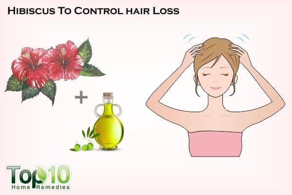 hibiscus to control hair loss