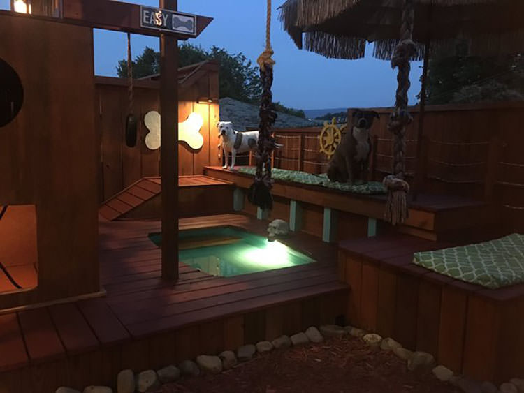 Man Spends 2 Years Turning His Backyard Into An Awesome Dog Playground  Top13
