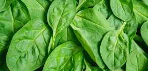 Fresh green baby spinach leaves Top2HomeRemedies.com