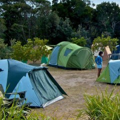Top 3 Campgrounds on the Gold Coast