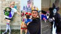 Petrifying Pets: Matching Pet And Owner Halloween Costumes ...
