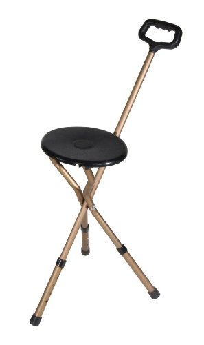 walking stick chair heavy duty eileen gray transat 1927 the 5 best folding cane seats ranked product reviews and ratings drive medical adjustable height seat review