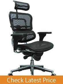 Ergohuman Mesh Ergonomic High-Back Chair
