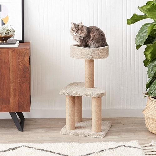 Best Cat Tree Under $100 - Amazon Basics Cat Tree With Jute Scratching Posts