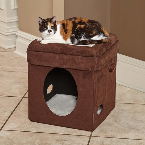 Best Cat Tree Under $100 - MidWest Curious Cat Cube