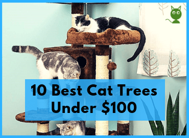 10 Best Cat Trees Under $100