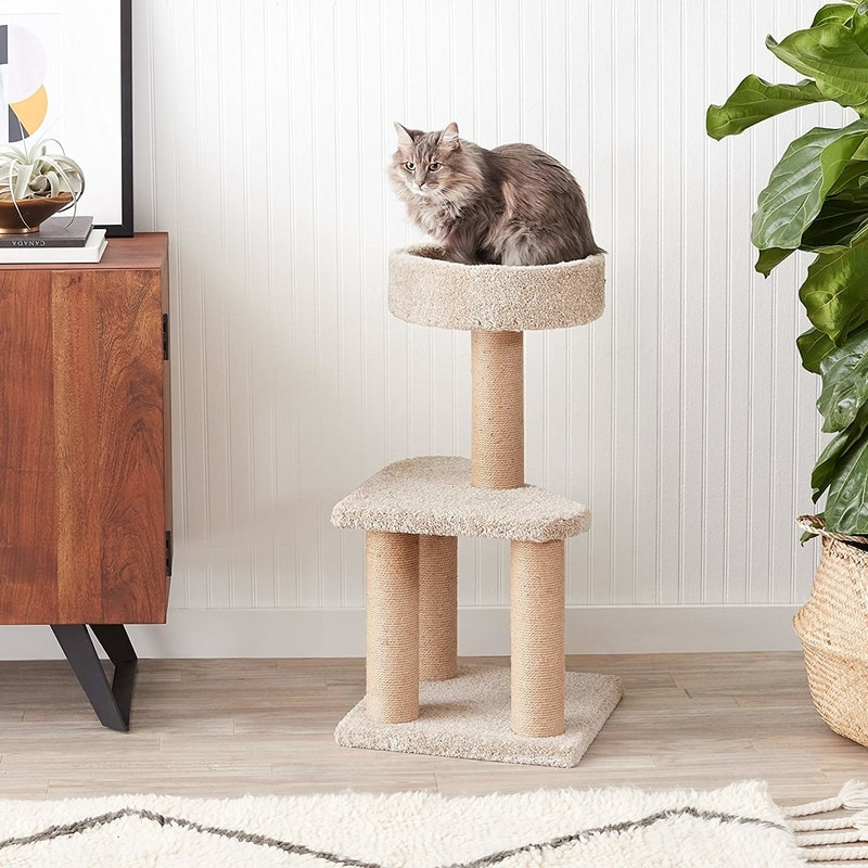 Best Cat Trees Smart Buyers Guide - Amazon Basics Carpet Cat Tree