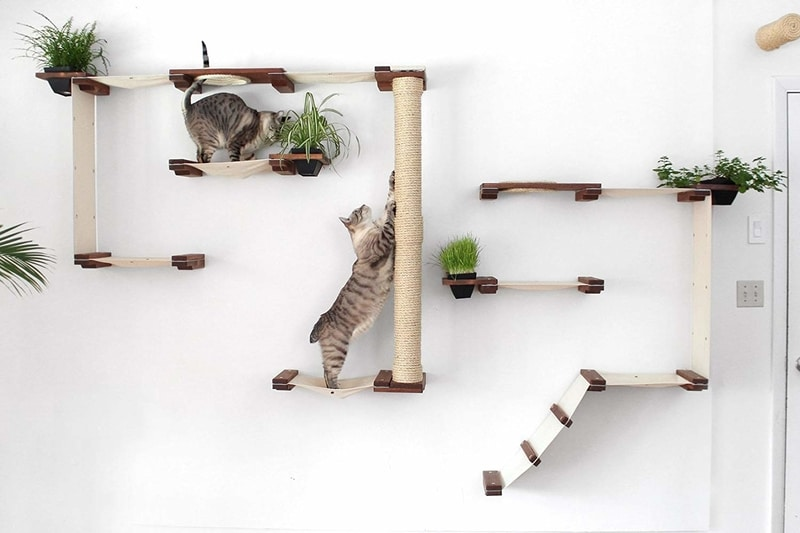Best Cat Trees Smart Buyers Guide - CatastrophiCreations Wall Mounted Cat Tree Complex