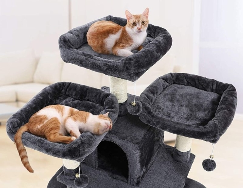 Best Cat Trees Smart Buyers Guide - Songmics 67-Inch Multi-Level Cat Tree with Napping Areas