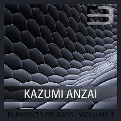 Elements Of Bass Volume 1 – Kazumi Anzai