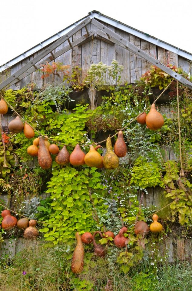 Autumn Garden Decor Ideas