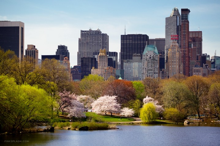 Desktop Wallpaper Fall Scenes Amazing Pictures From Central Park In Spring