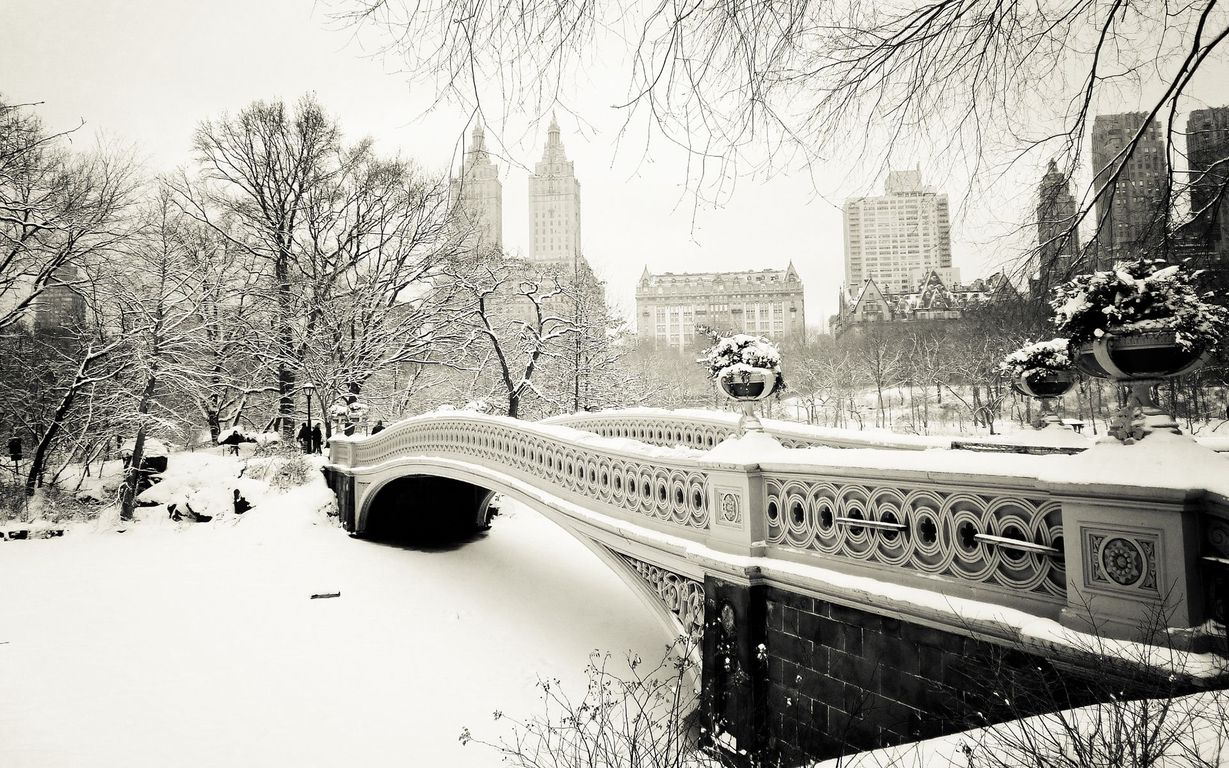 Nos Cars Wallpaper Fascinating Winter Photography Of Central Park