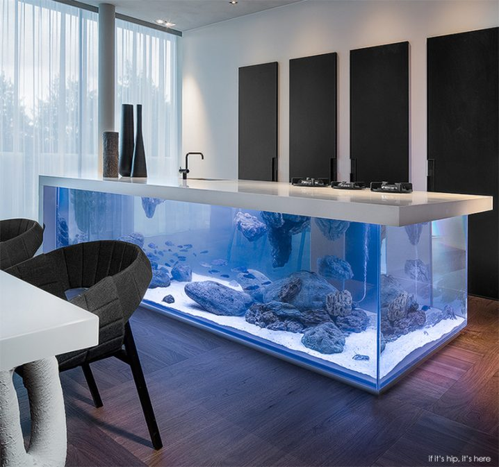 10 Unusual Aquariums That Will Blow Your Mind