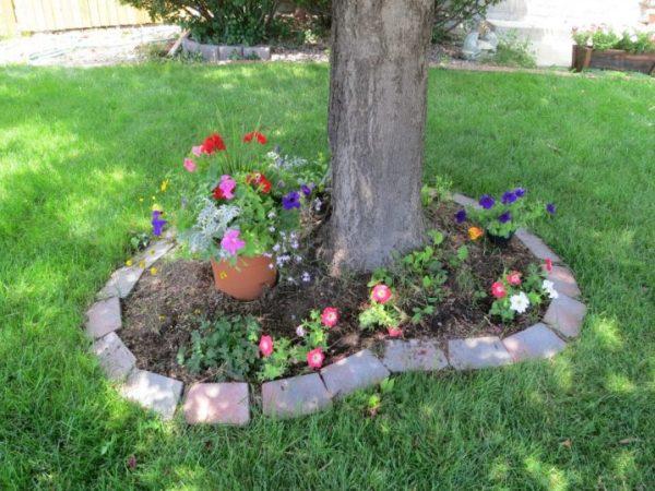 eye-catching flower beds