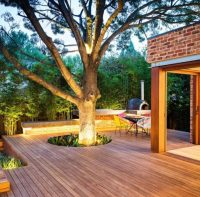 Beautiful Backyard Tree Lighting Ideas That Will Fascinate You