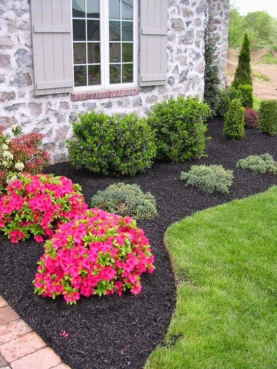 amazing landscaping ideas