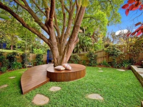 landscaping trees - ideas