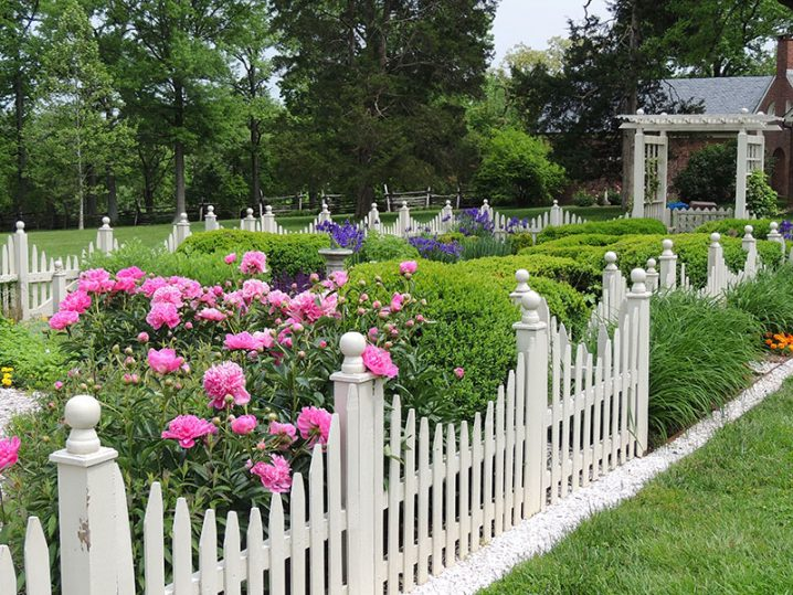 Picket Fence Garden Ideas That Will Make You Say WOW
