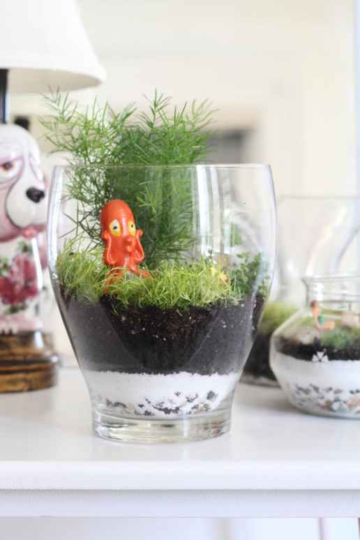 How To Make A DIY Terrarium The Right Way