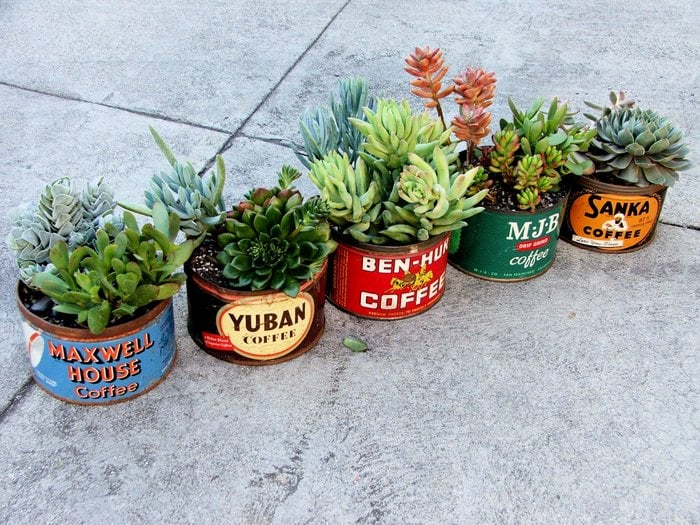 Creative DIY Planters That Will Surprise You