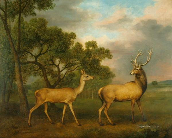 Deer Oil Paintings