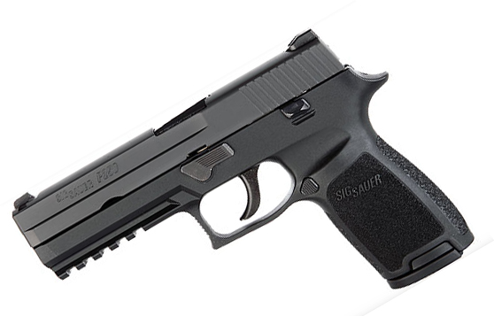 Sig Sauer P250 Full Size. .45ACP. Nitron. SigLite Night Sights. DAO - Top Gun Supply