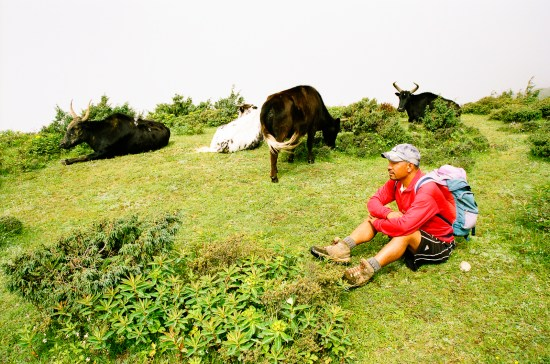 Pemba Sherpa le bien nommé © JanPier