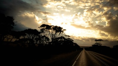 Straight ahead mate ! © Yopich