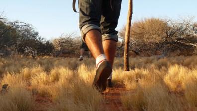 On n'est pas passé loin de se perdre ad vitam dans le bush... Hein BeuFa ? © Yopich