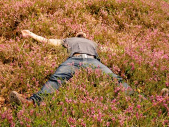 Nap in flowers © Sandy