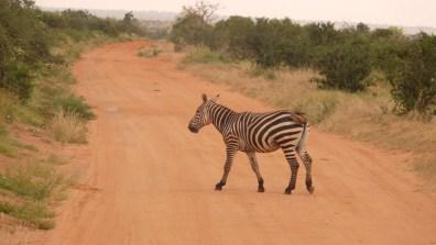 Entrée dans le parc de Tsavo © Topich