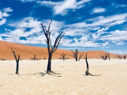 Namibia-63