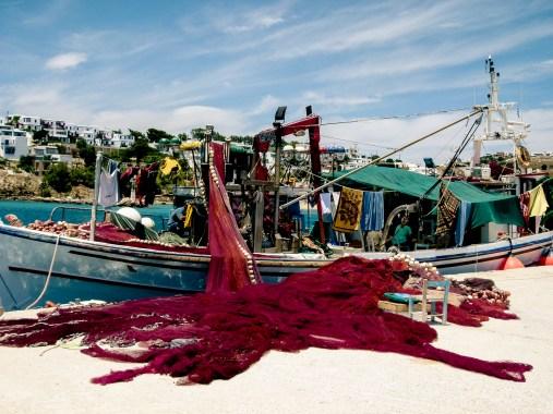 Pêche en couleur