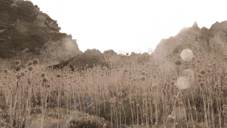 Iles sanguinaires I © Topich